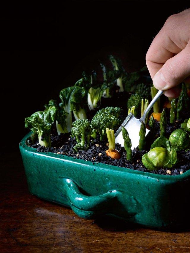garden_salad_heston_blumenthal